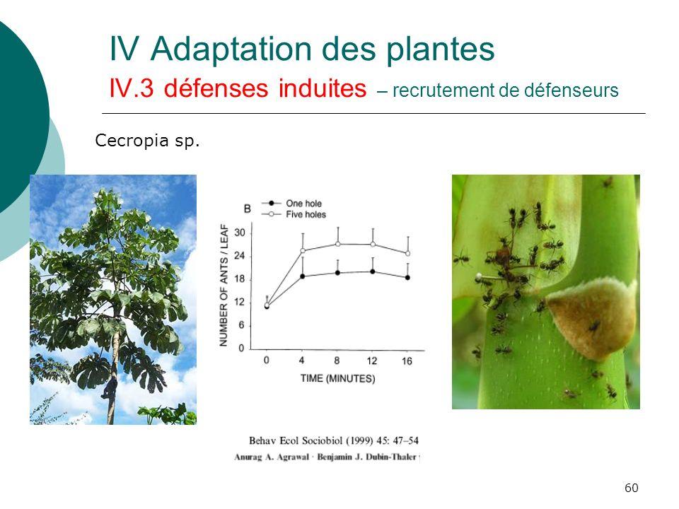 IV Adaptation des plantes IV