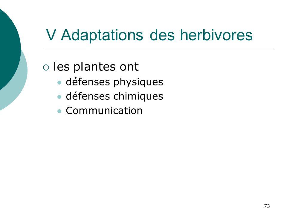 V Adaptations des herbivores