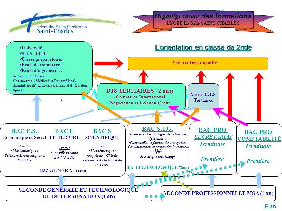 PASSERELLES w w Organigramme des formations