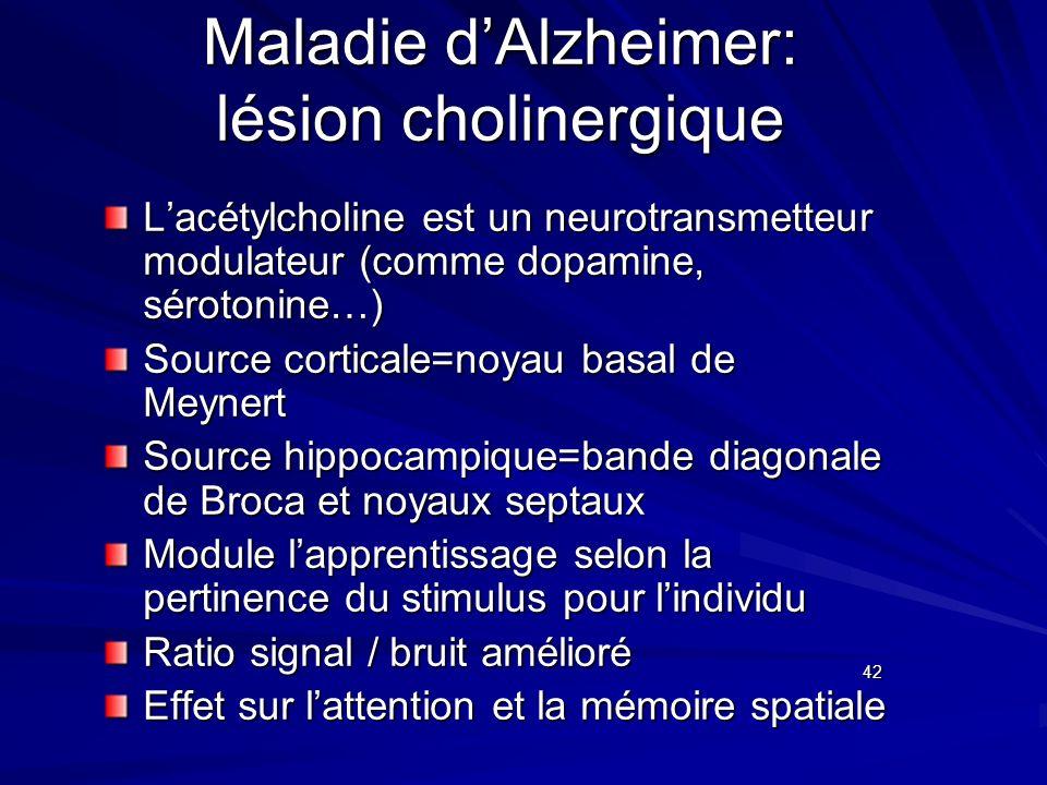 Maladie d'Alzheimer: lésion cholinergique
