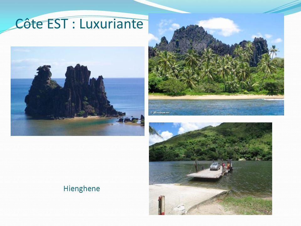 Côte EST : Luxuriante Hienghene