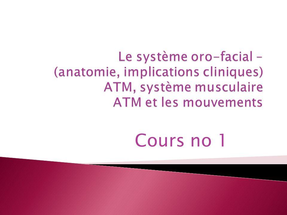 Le système oro-facial – (anatomie, implications cliniques) ATM, système musculaire ATM et les mouvements