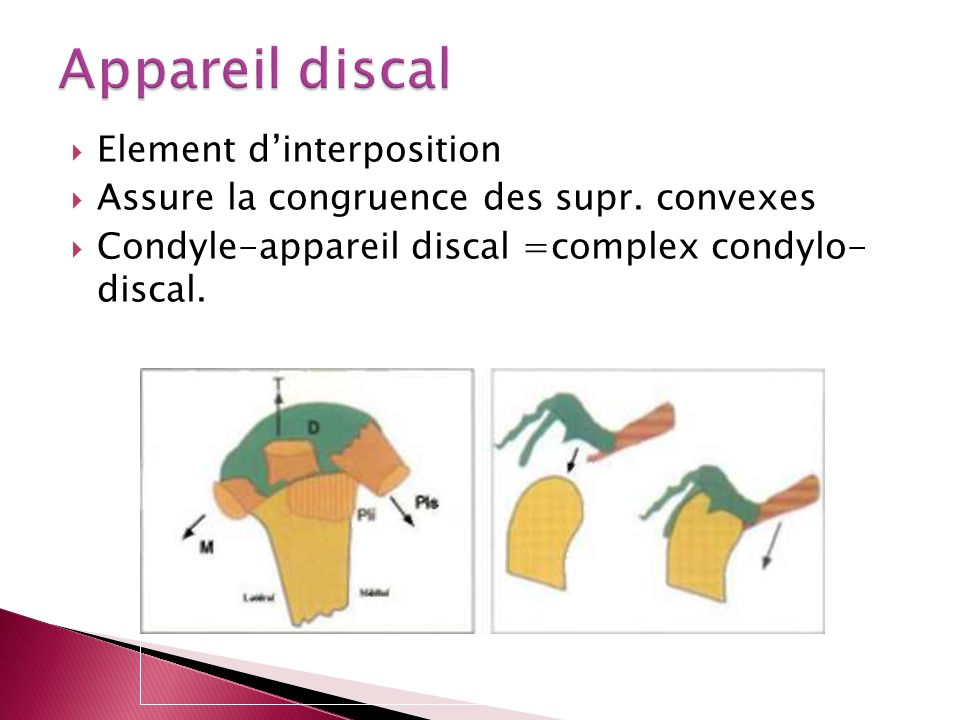 Appareil discal Element d'interposition