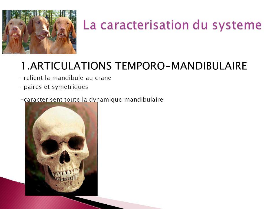 La caracterisation du systeme