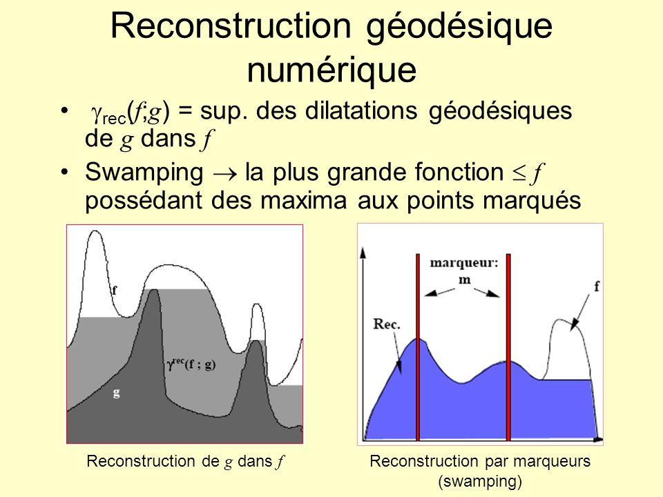 Reconstruction géodésique numérique