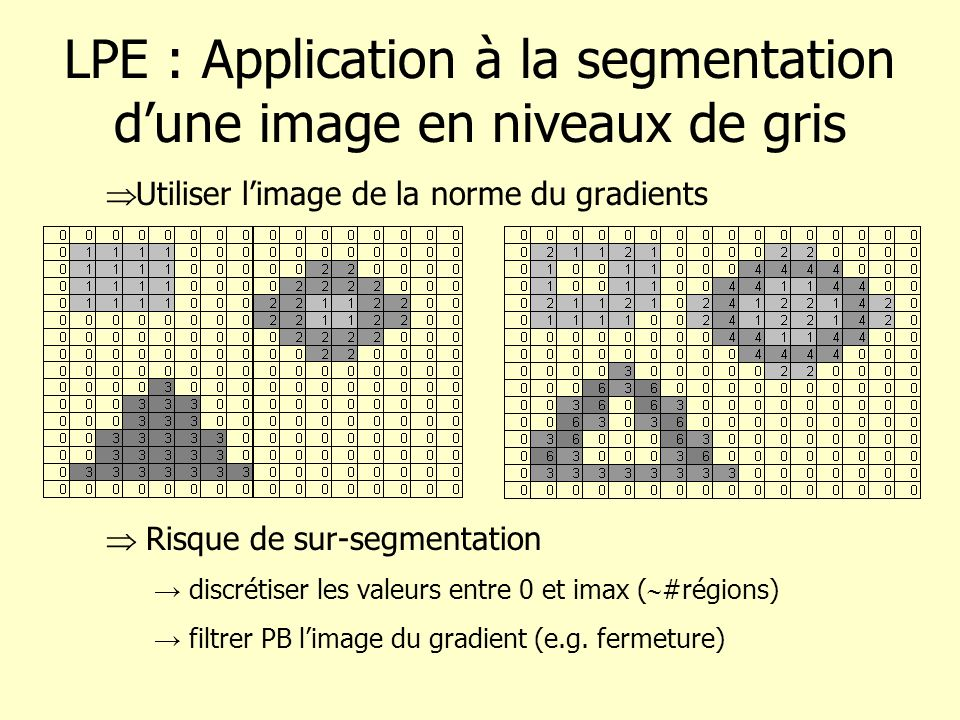 LPE : Application à la segmentation d'une image en niveaux de gris