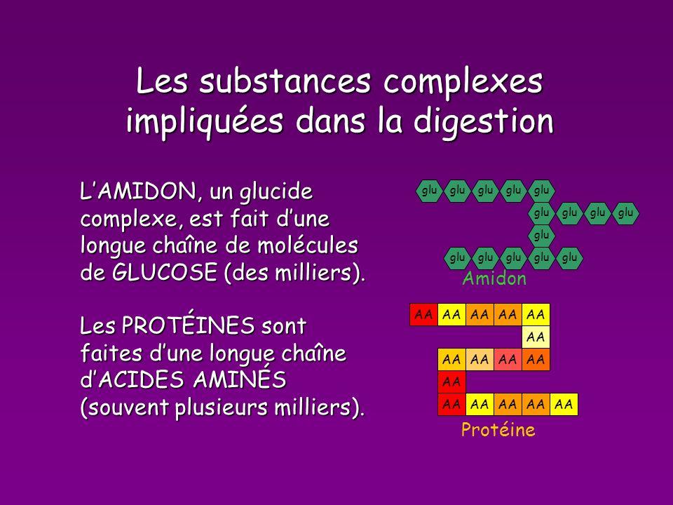 Les substances complexes impliquées dans la digestion