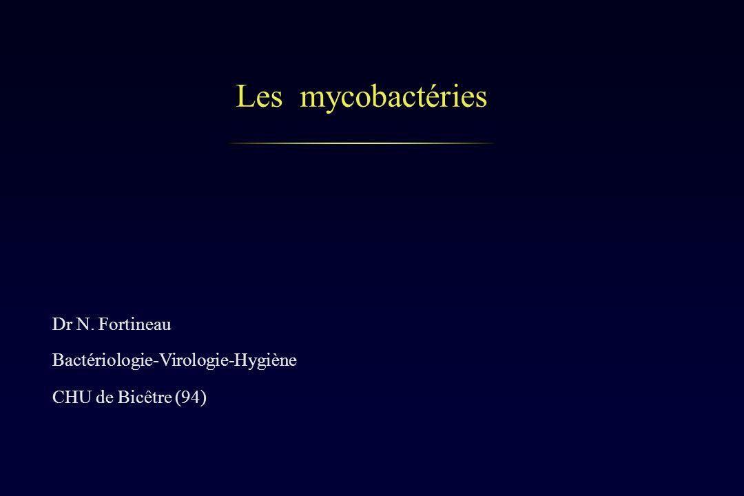 Les mycobactéries Dr N. Fortineau Bactériologie-Virologie-Hygiène