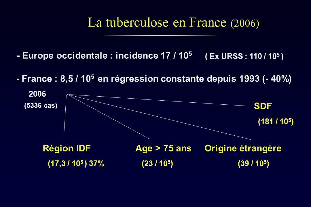 La tuberculose en France (2006)