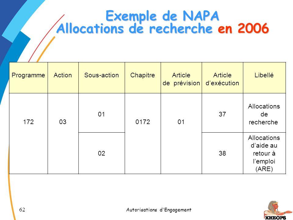 Exemple de NAPA Allocations de recherche en 2006