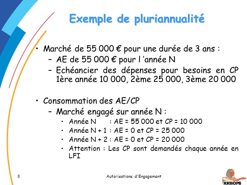 Exemple de pluriannualité