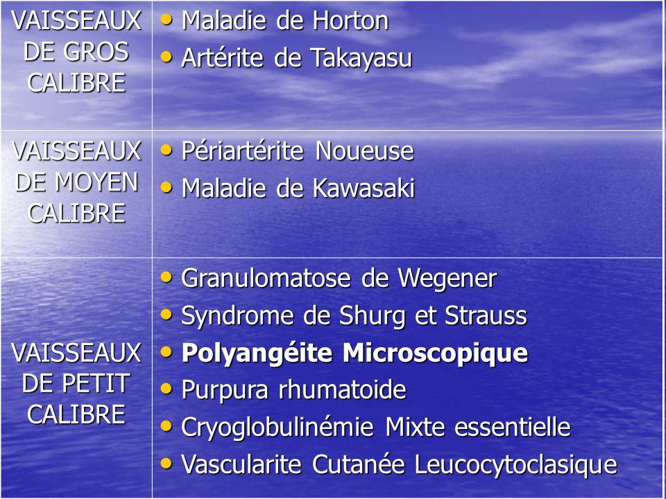 VAISSEAUX DE GROS CALIBRE Maladie de Horton Artérite de Takayasu