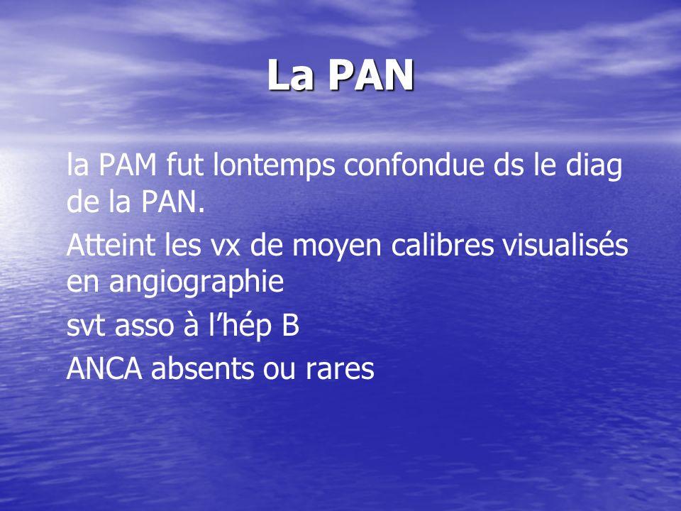 La PAN la PAM fut lontemps confondue ds le diag de la PAN.