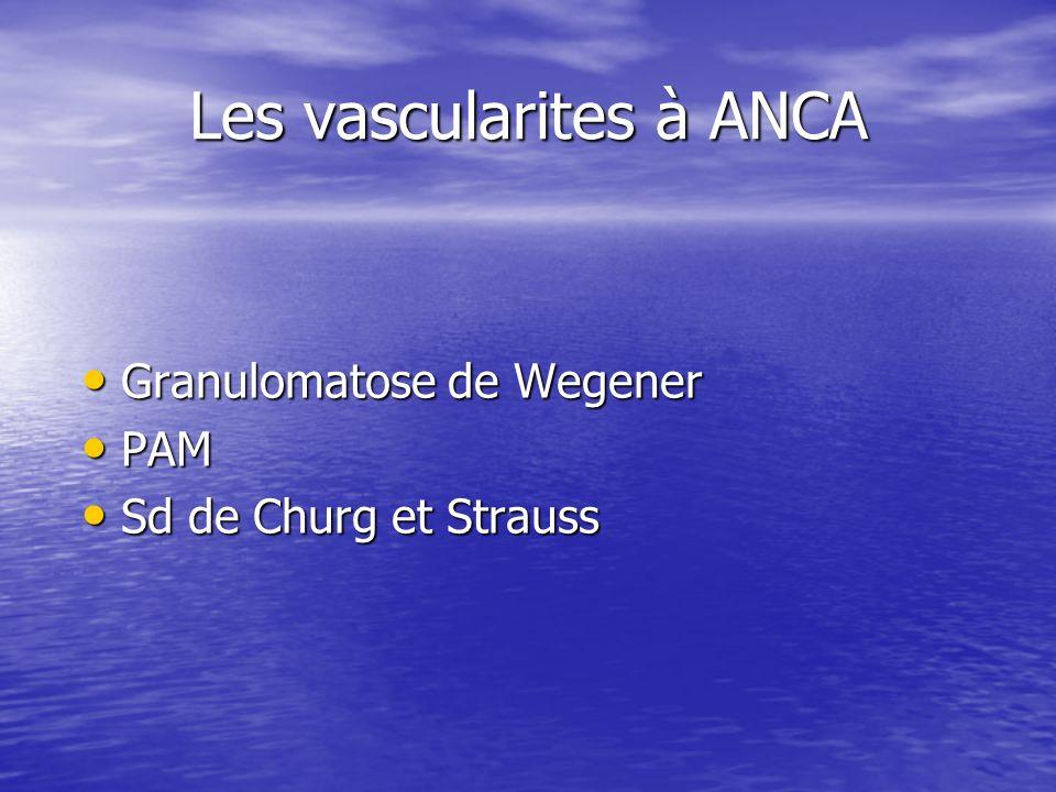 Les vascularites à ANCA