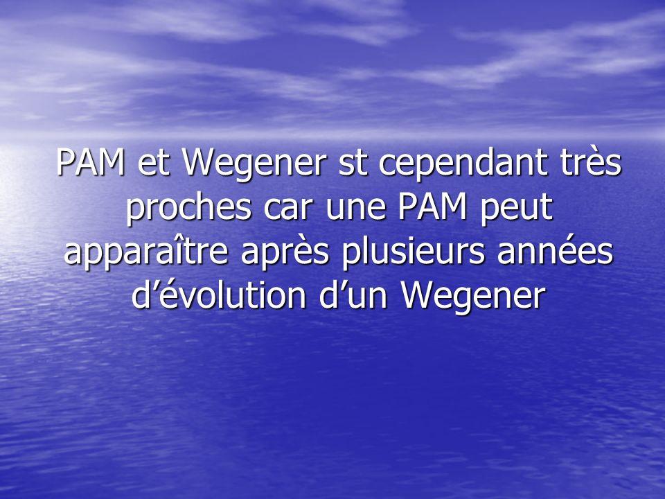 PAM et Wegener st cependant très proches car une PAM peut apparaître après plusieurs années d'évolution d'un Wegener