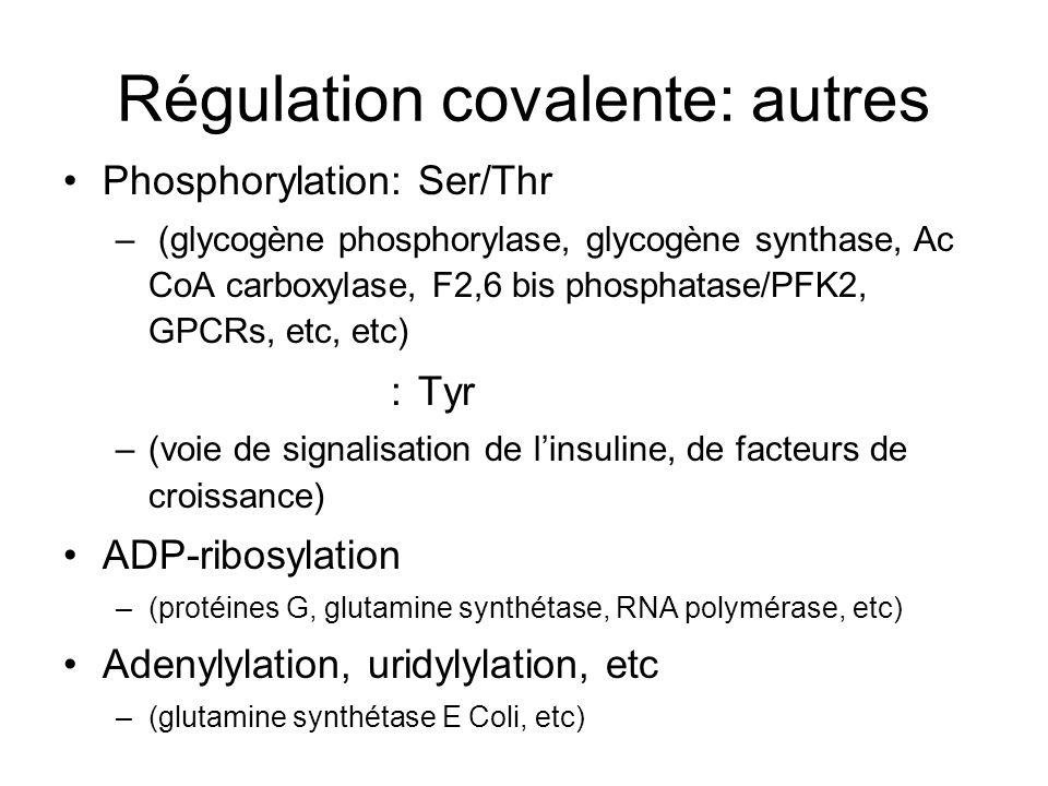 Régulation covalente: autres