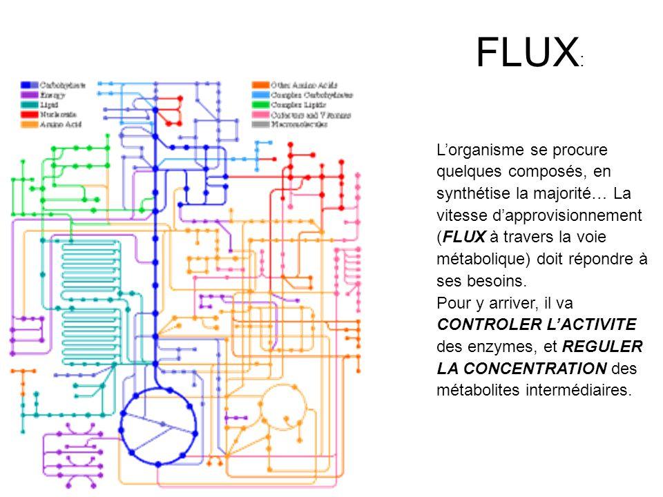 FLUX: