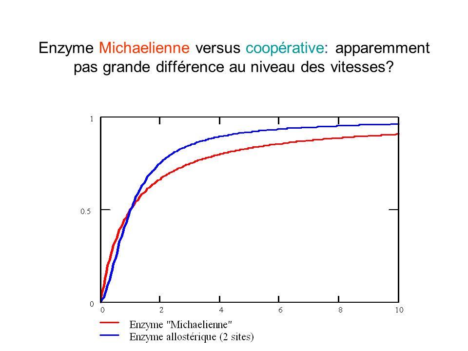Enzyme Michaelienne versus coopérative: apparemment pas grande différence au niveau des vitesses