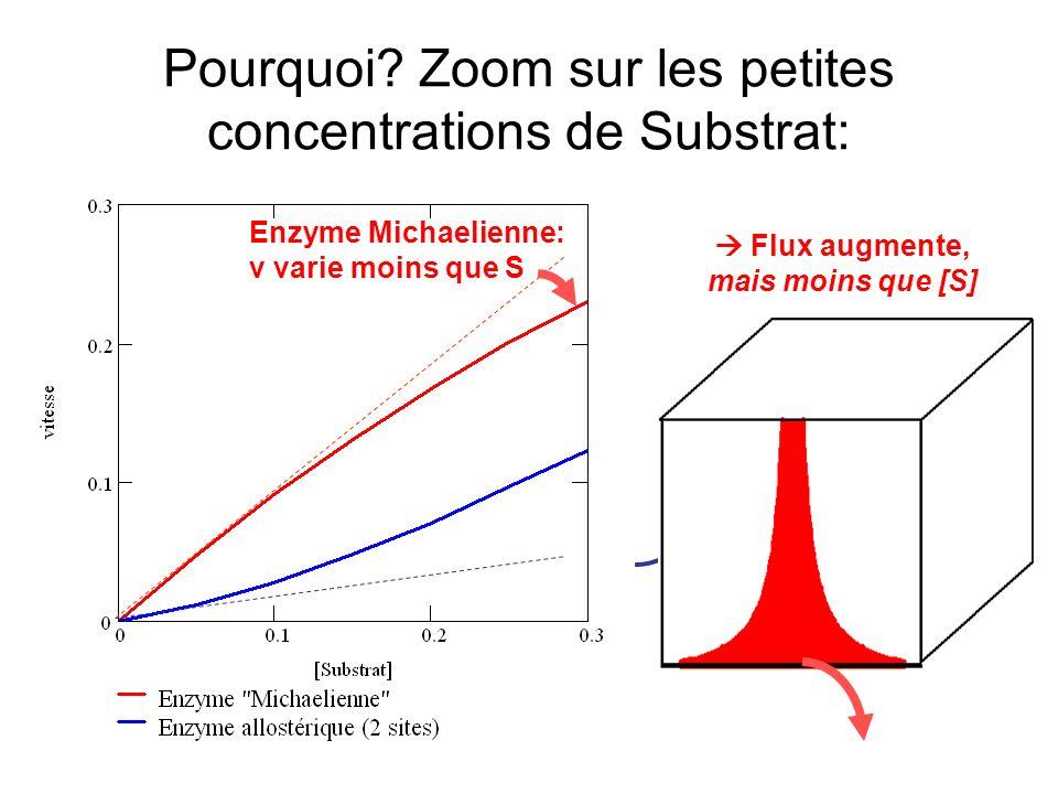 Pourquoi Zoom sur les petites concentrations de Substrat:
