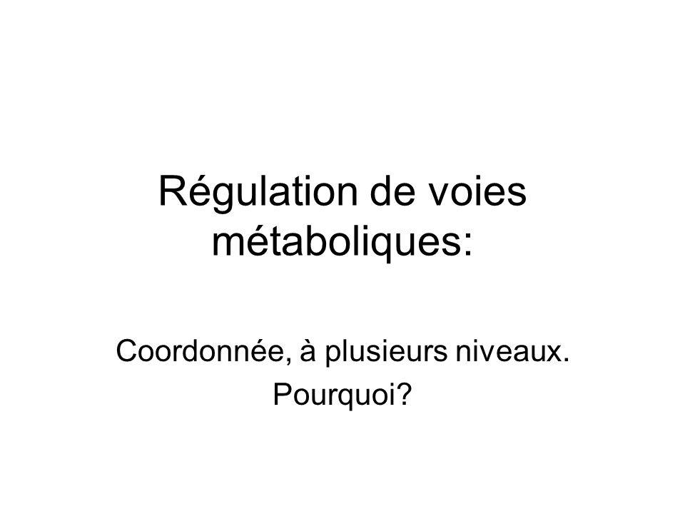 Régulation de voies métaboliques: