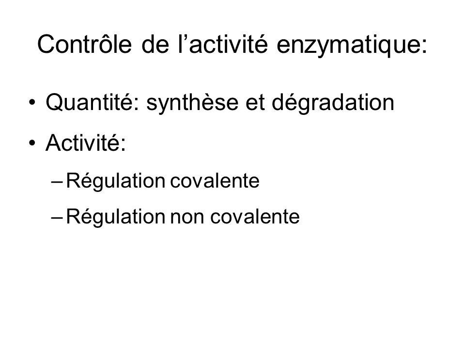 Contrôle de l'activité enzymatique: