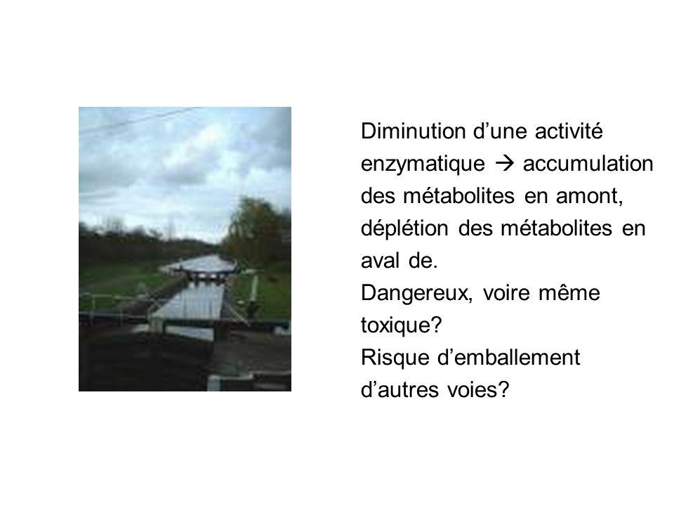 Diminution d'une activité enzymatique  accumulation des métabolites en amont, déplétion des métabolites en aval de.