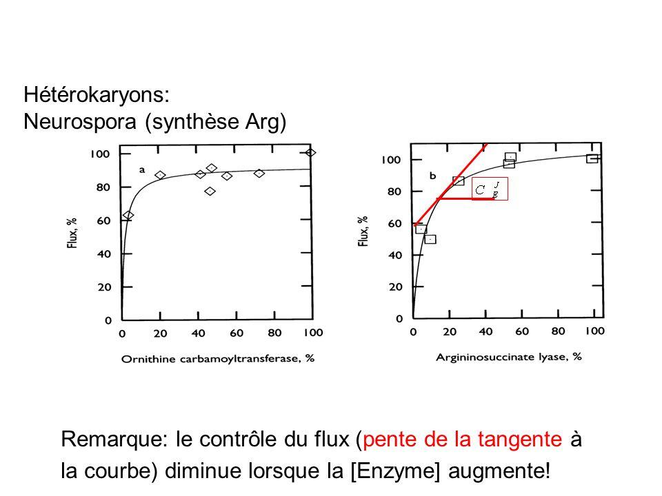 Hétérokaryons: Neurospora (synthèse Arg)