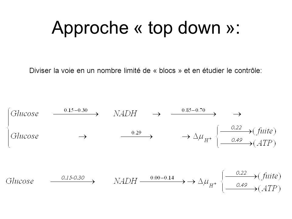 Approche « top down »: Diviser la voie en un nombre limité de « blocs » et en étudier le contrôle: