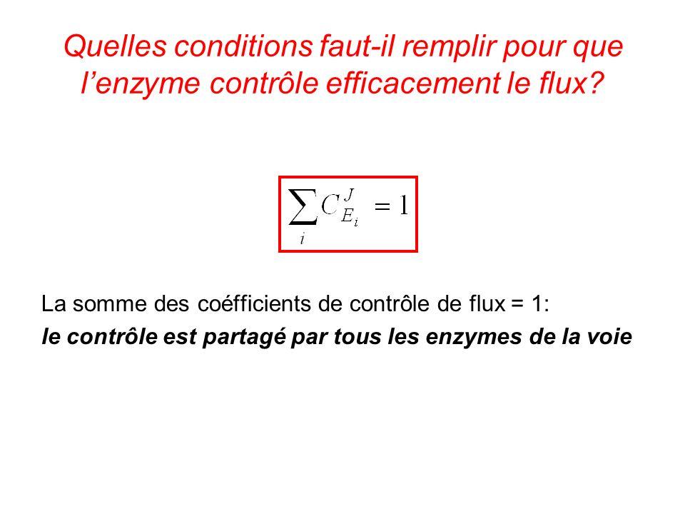 Quelles conditions faut-il remplir pour que l'enzyme contrôle efficacement le flux