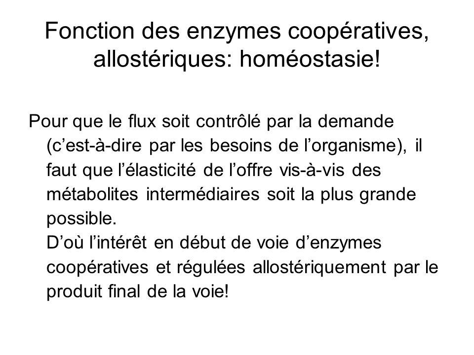 Fonction des enzymes coopératives, allostériques: homéostasie!