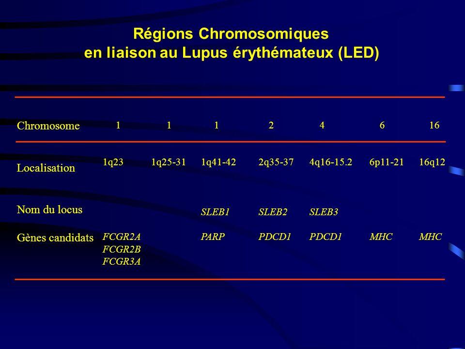 Régions Chromosomiques en liaison au Lupus érythémateux (LED)