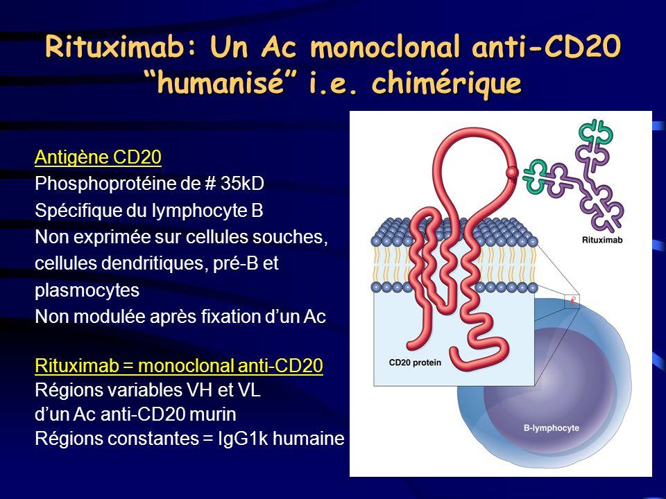 Rituximab: Un Ac monoclonal anti-CD20 humanisé i.e. chimérique
