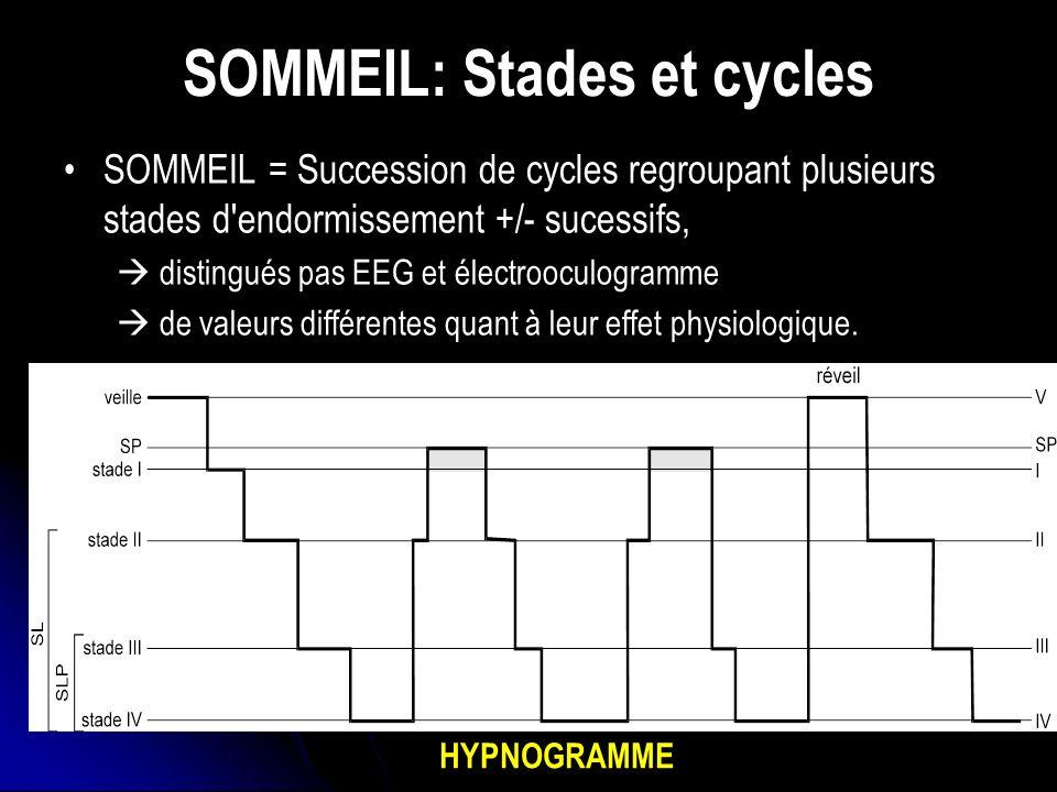 SOMMEIL: Stades et cycles
