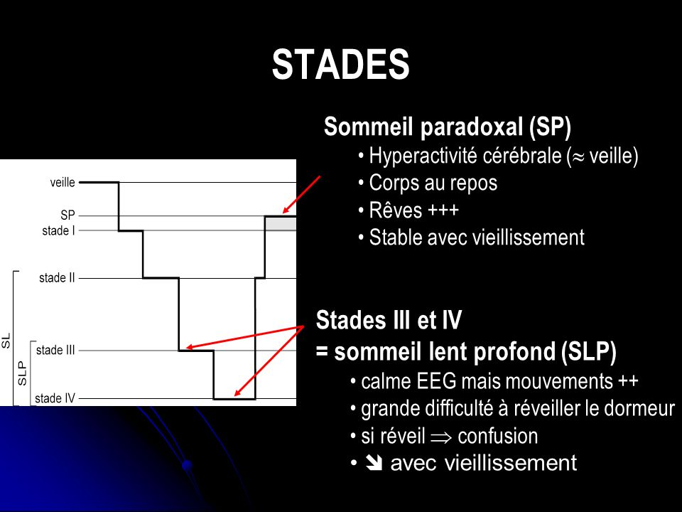 STADES Sommeil paradoxal (SP)