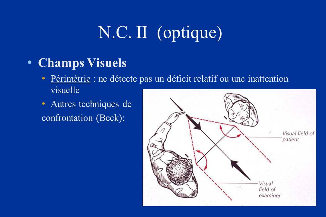 N.C. II (optique) Champs Visuels