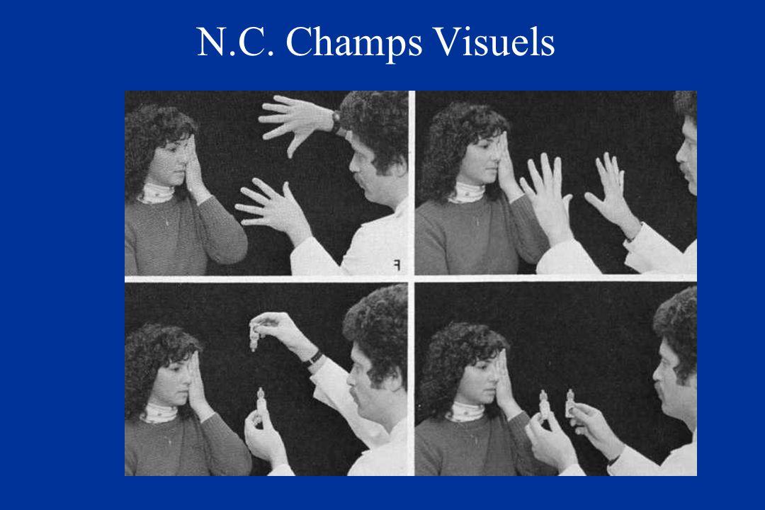 N.C. Champs Visuels