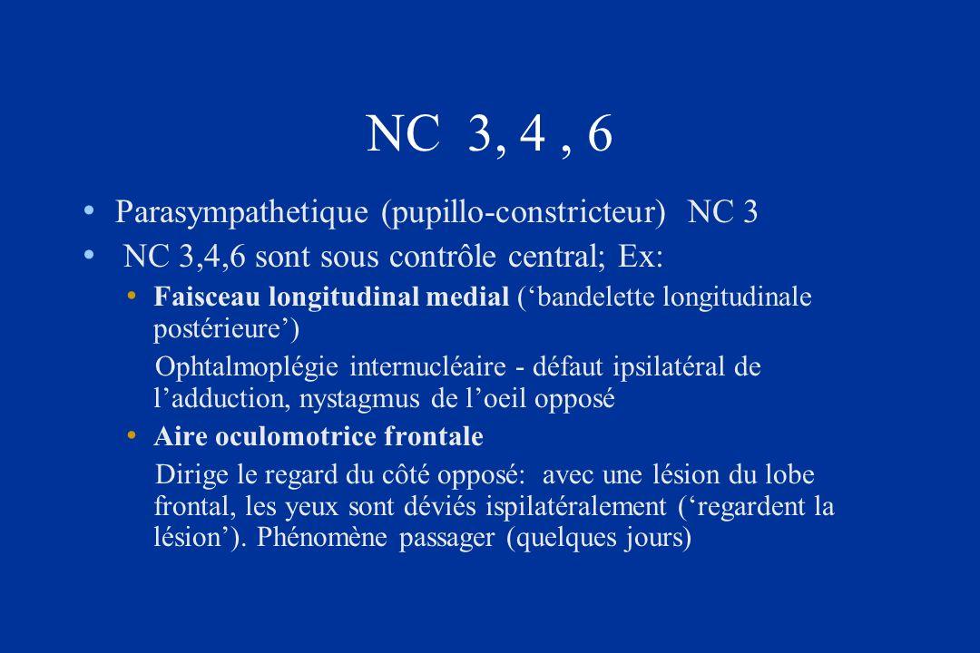 NC 3, 4 , 6 Parasympathetique (pupillo-constricteur) NC 3