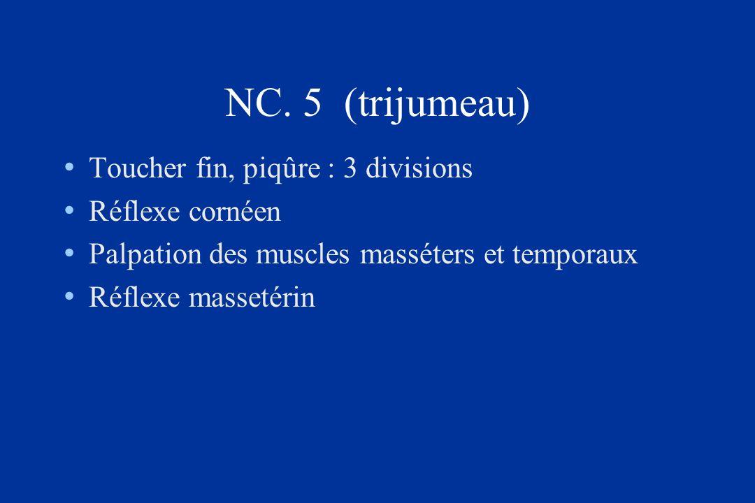NC. 5 (trijumeau) Toucher fin, piqûre : 3 divisions Réflexe cornéen