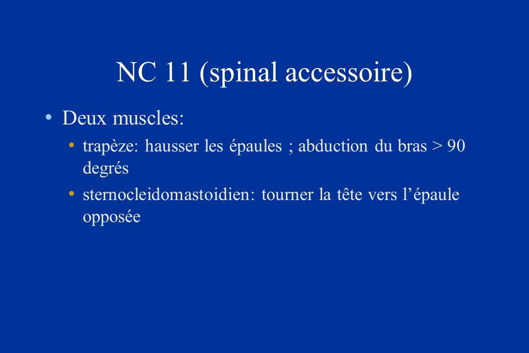 NC 11 (spinal accessoire)