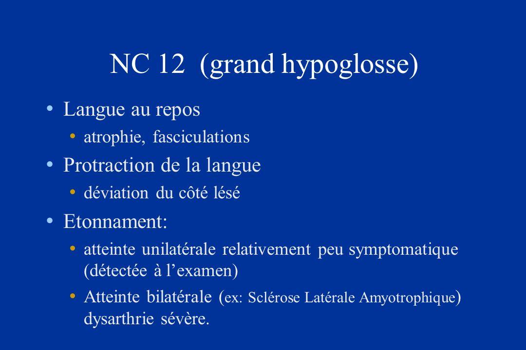 NC 12 (grand hypoglosse) Langue au repos Protraction de la langue