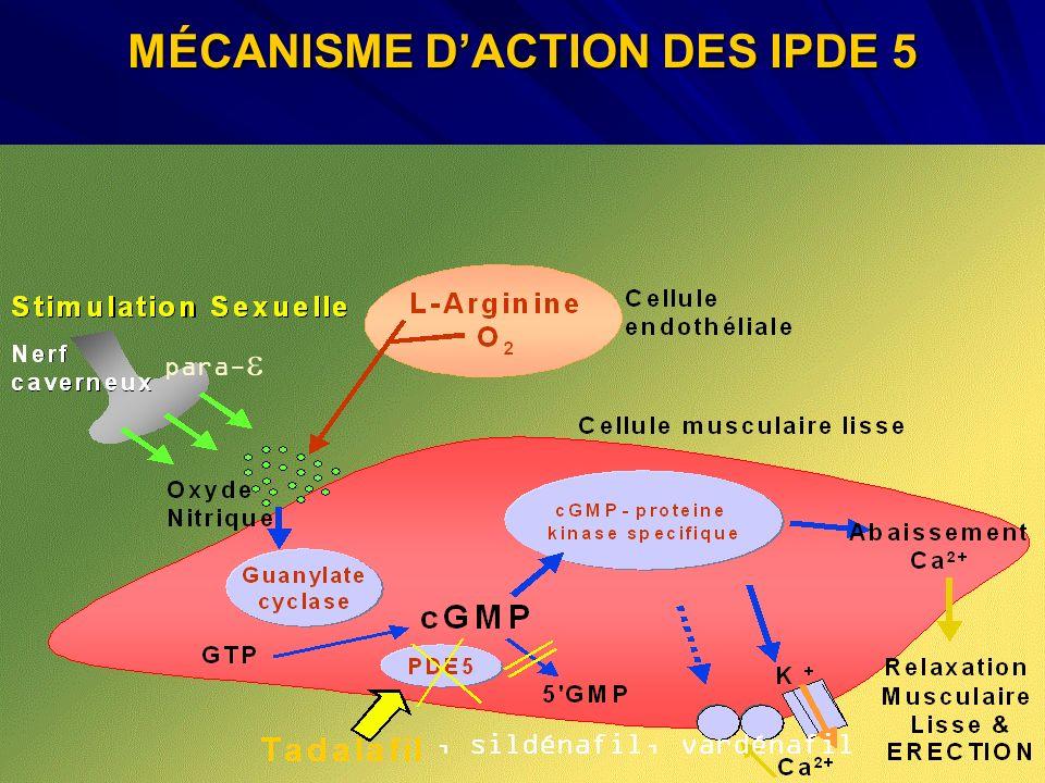 MÉCANISME D'ACTION DES IPDE 5