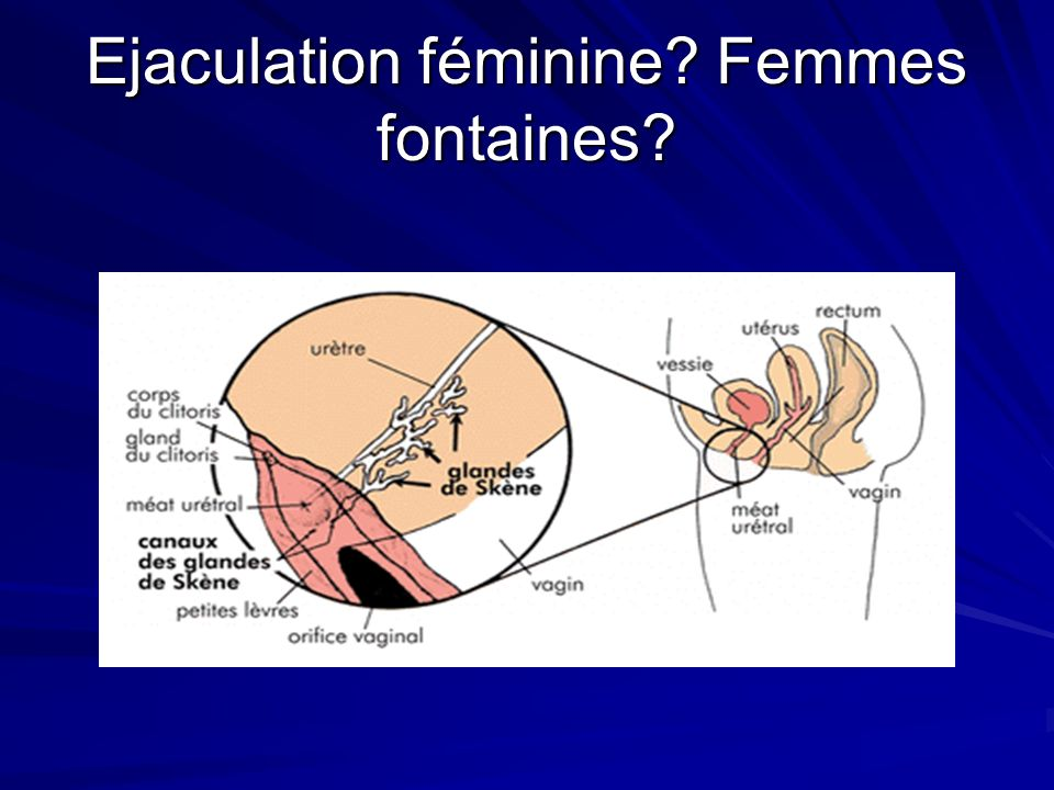 Ejaculation féminine Femmes fontaines