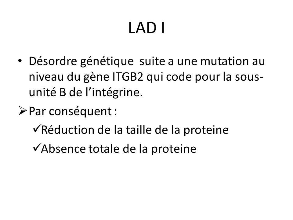 LAD I Désordre génétique suite a une mutation au niveau du gène ITGB2 qui code pour la sous-unité B de l'intégrine.