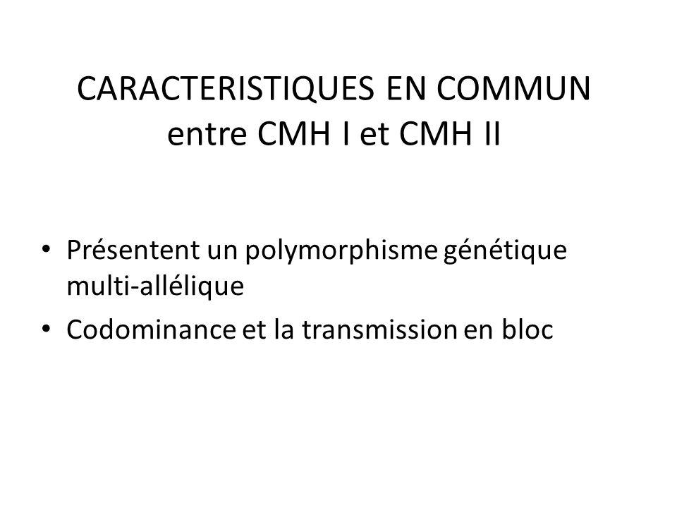 CARACTERISTIQUES EN COMMUN entre CMH I et CMH II