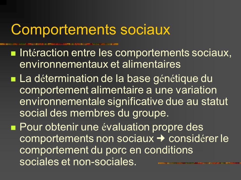 Comportements sociaux