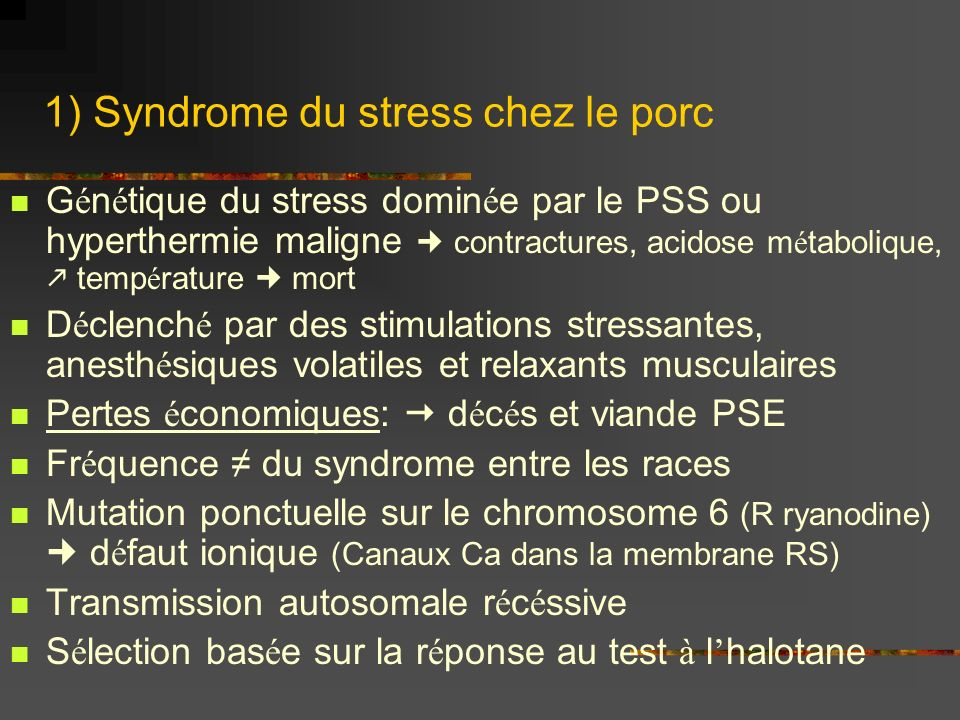 1) Syndrome du stress chez le porc