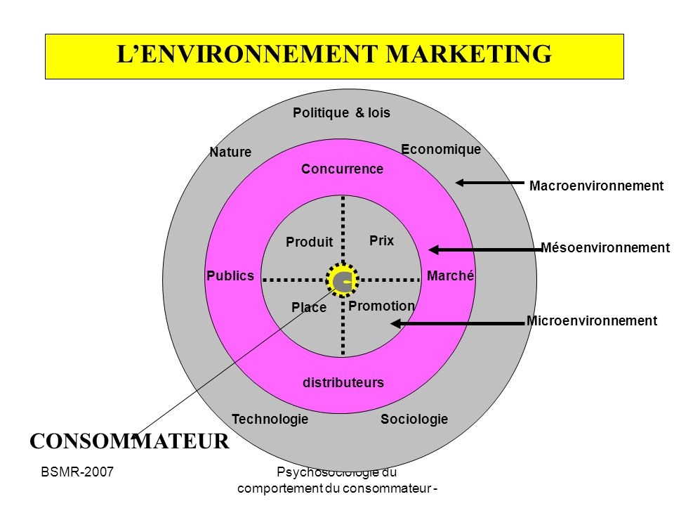 L'ENVIRONNEMENT MARKETING