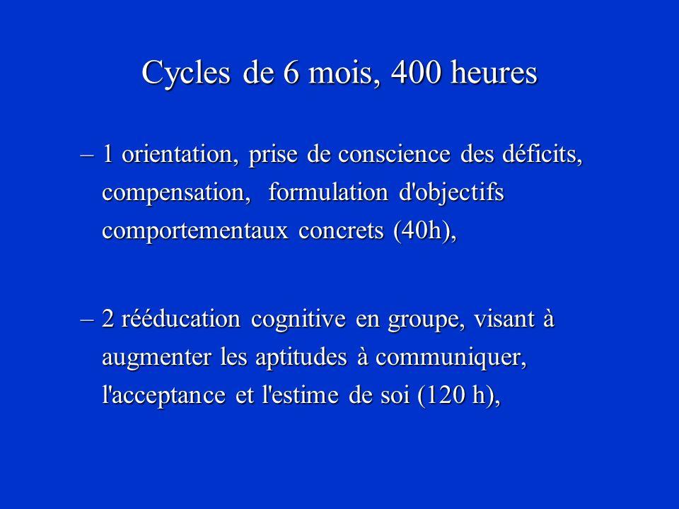 Cycles de 6 mois, 400 heures 1 orientation, prise de conscience des déficits, compensation, formulation d objectifs comportementaux concrets (40h),