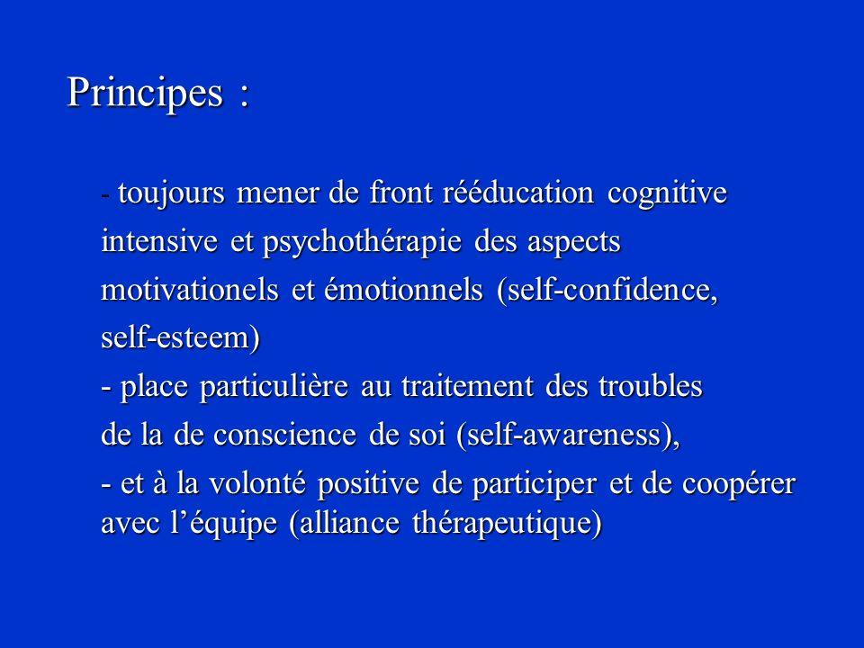 Principes : intensive et psychothérapie des aspects