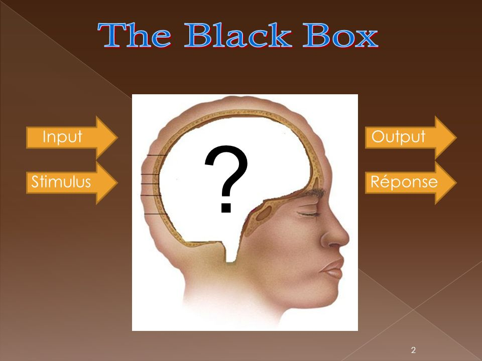 The Black Box Input Output Stimulus Réponse